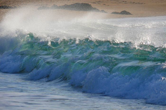 Événement EMR : Ocean Energy Europe met le cap sur les Pays de la Loire